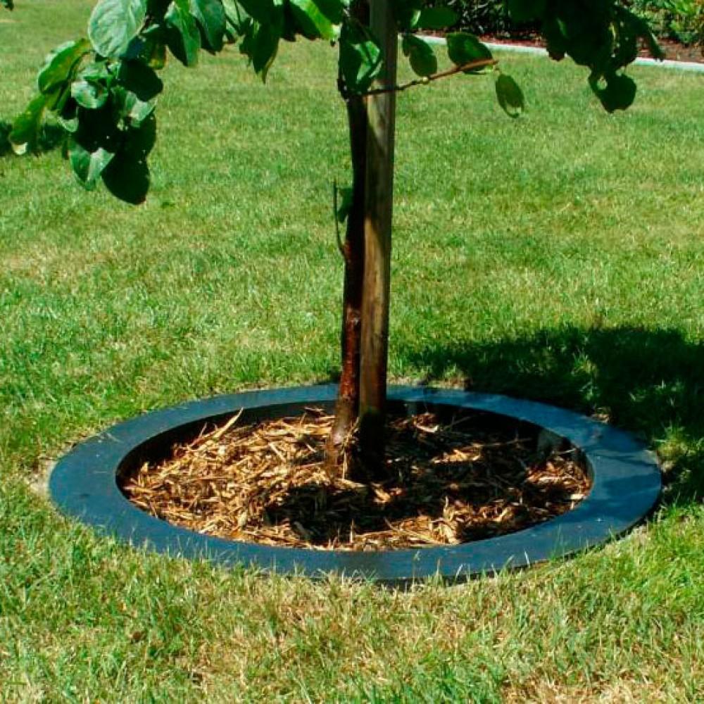 Smartkant afgrænser til træer-31
