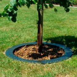 Smartkant afgrænser til træer-20